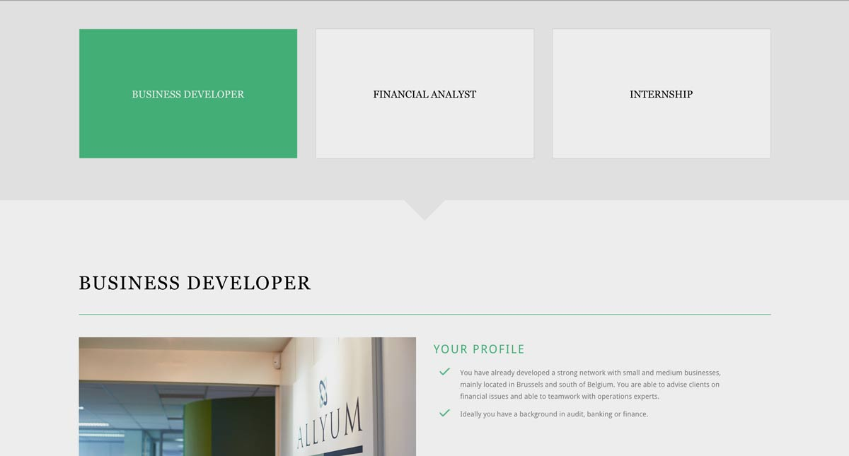 allyum corporate finance responsive website screenshot